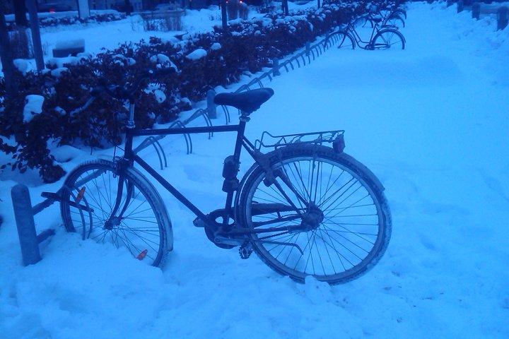+ ingen trängsel i ställen och du kan använda snö som ställ.