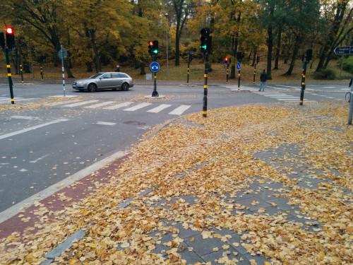 Vaaar tog cykelbanan vägen? Dåligt underhåll skapar olyckor.